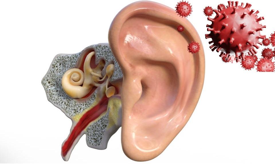 COVID 19 y pérdida auditiva