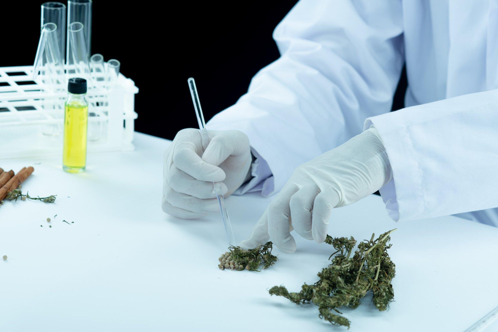 Cannabis medicinal y COVID 19